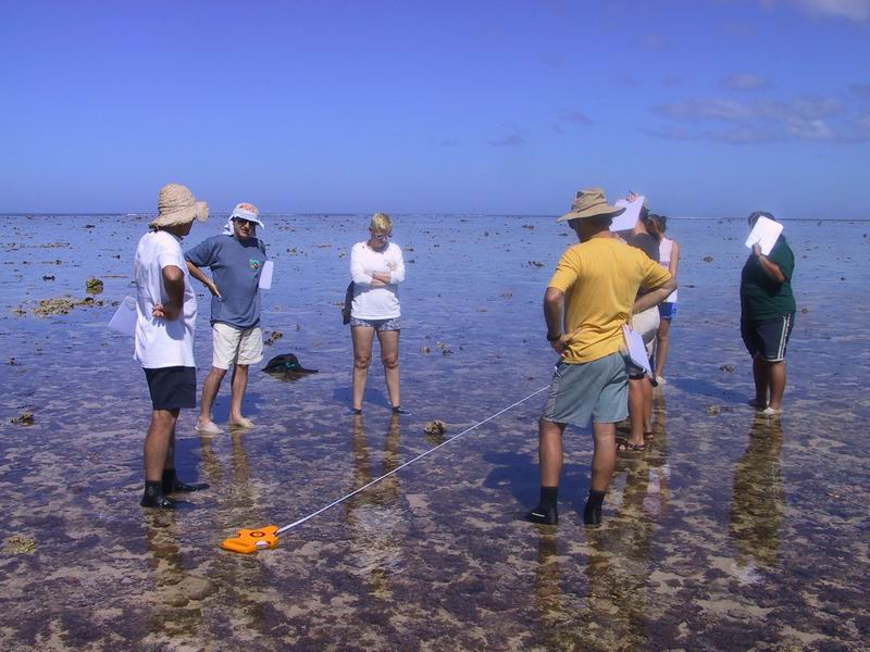 Line transect survey demonstraton on reef flat