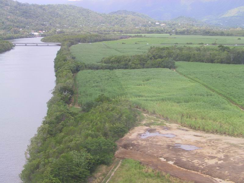 Sugar cane farming extends nearly to the river edge, enhancing potential for runoff into rivers.