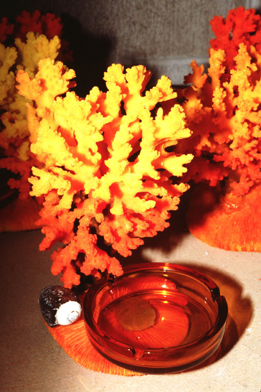 Painted coral (Pocillopora damicornis) for sale as tourist souvenir.