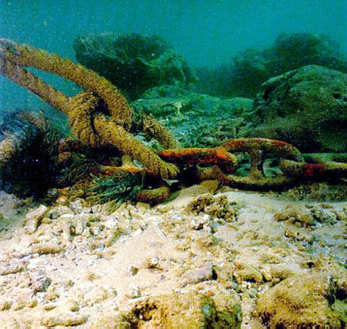 Anchors and chains break and abrade the corals.