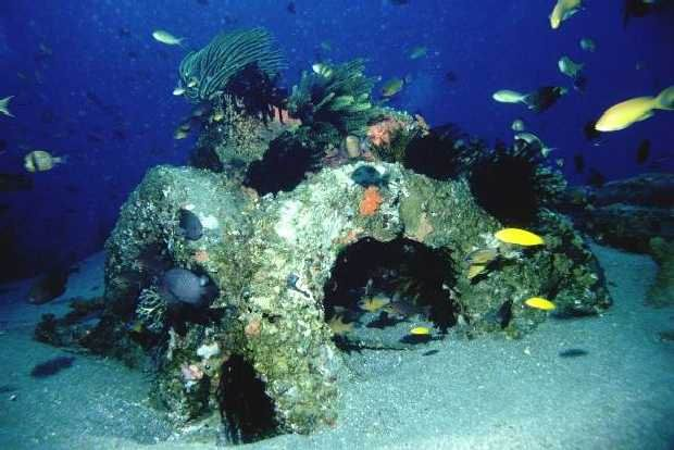 Encrusted artificial tire reef