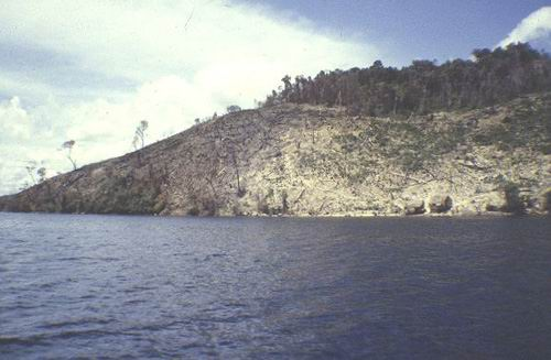 Denuded slopes adjacent reefs increases sedimentation.
