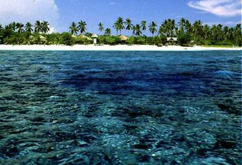 A narrow reef flat which terminates in a vertical drop fringes the white sand beach of Balicasag Is.